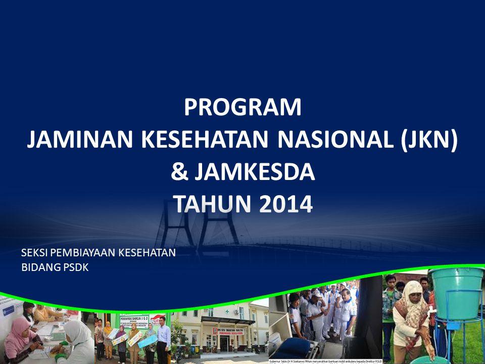 PROGRAM JAMINAN KESEHATAN NASIONAL (JKN) & JAMKESDA TAHUN 2014 SEKSI PEMBIAYAAN KESEHATAN BIDANG PSDK