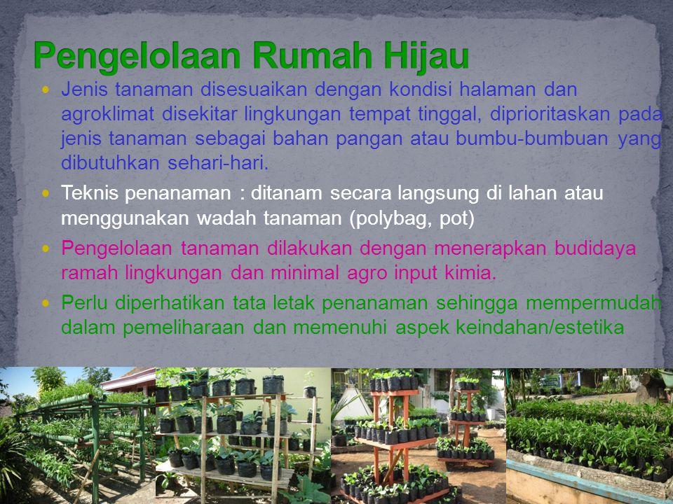 Jenis tanaman disesuaikan dengan kondisi halaman dan agroklimat disekitar lingkungan tempat tinggal, diprioritaskan pada jenis tanaman sebagai bahan p