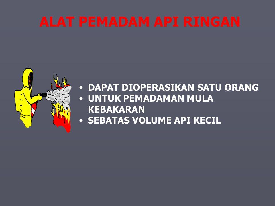 ALAT PEMADAM API RINGAN Portable Fire Extinguisher
