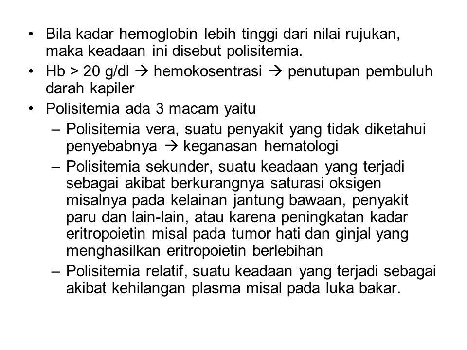 Bila kadar hemoglobin lebih tinggi dari nilai rujukan, maka keadaan ini disebut polisitemia.