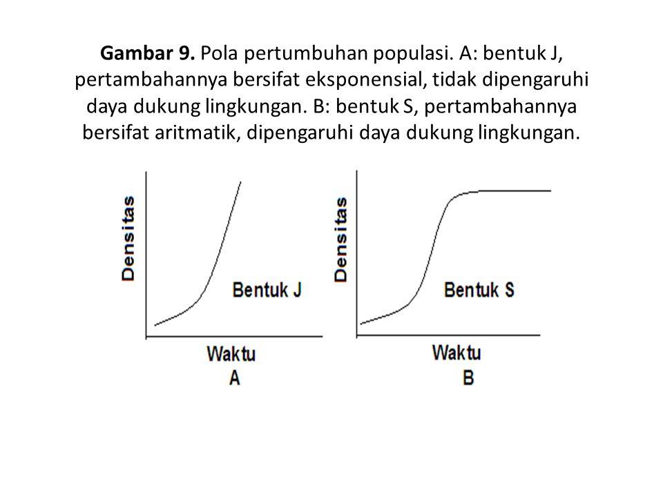 Gambar 9. Pola pertumbuhan populasi. A: bentuk J, pertambahannya bersifat eksponensial, tidak dipengaruhi daya dukung lingkungan. B: bentuk S, pertamb