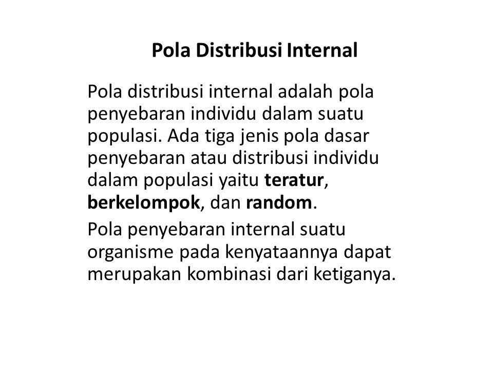 Pola Distribusi Internal Pola distribusi internal adalah pola penyebaran individu dalam suatu populasi. Ada tiga jenis pola dasar penyebaran atau dist
