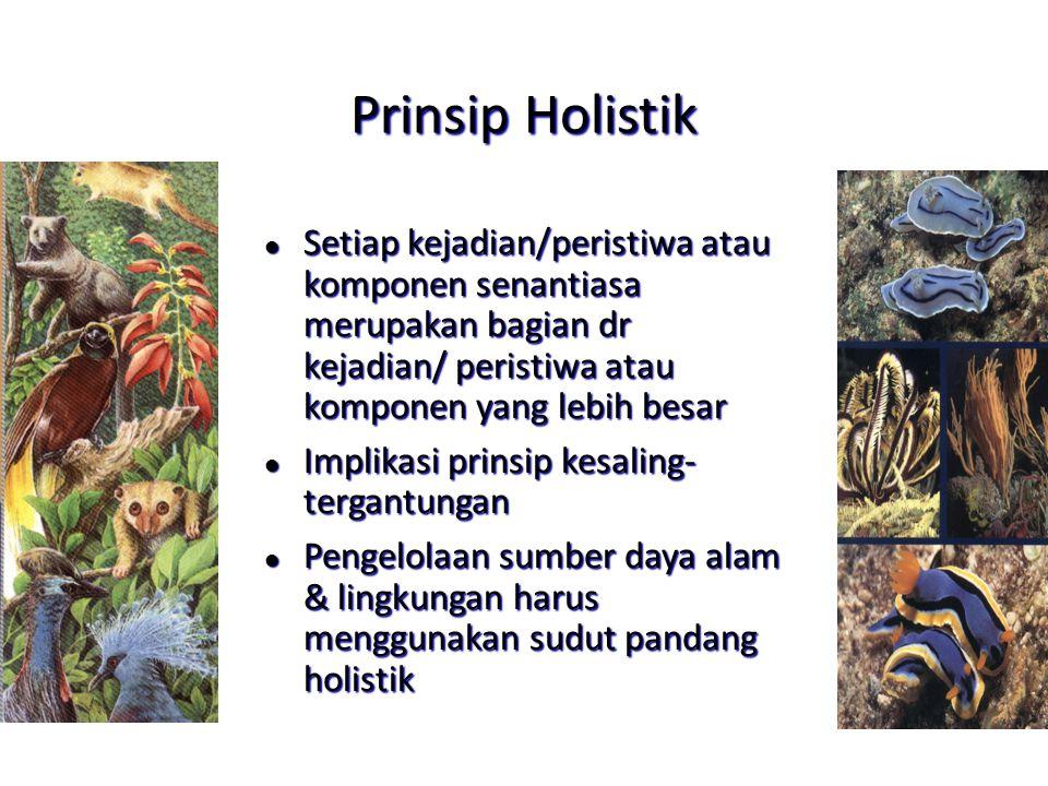 Prinsip Holistik l Setiap kejadian/peristiwa atau komponen senantiasa merupakan bagian dr kejadian/ peristiwa atau komponen yang lebih besar l Implika