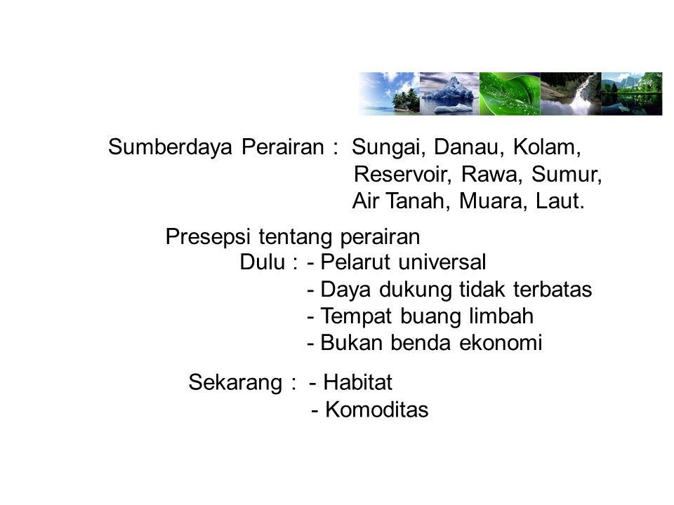 Sumberdaya Perairan : Sungai, Danau, Kolam, Reservoir, Rawa, Sumur, Air Tanah, Muara, Laut. Presepsi tentang perairan Dulu :- Pelarut universal - Daya