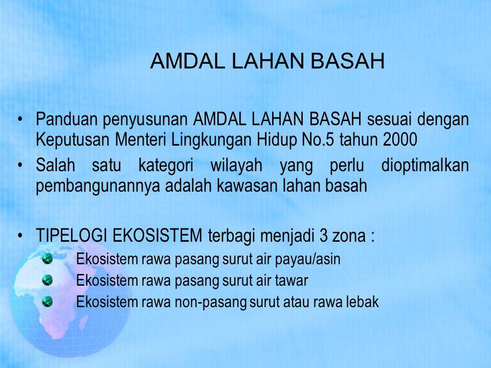 AMDAL LAHAN BASAH Panduan penyusunan AMDAL LAHAN BASAH sesuai dengan Keputusan Menteri Lingkungan Hidup No.5 tahun 2000 Salah satu kategori wilayah ya