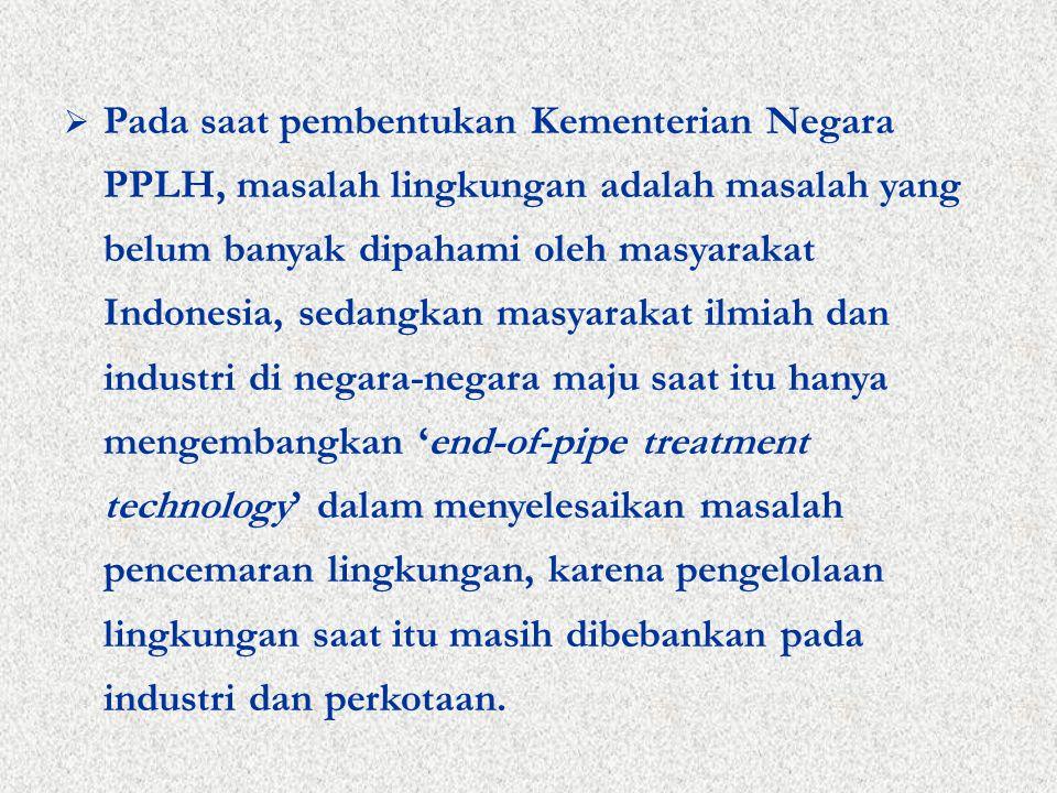  Pada saat pembentukan Kementerian Negara PPLH, masalah lingkungan adalah masalah yang belum banyak dipahami oleh masyarakat Indonesia, sedangkan masyarakat ilmiah dan industri di negara-negara maju saat itu hanya mengembangkan 'end-of-pipe treatment technology' dalam menyelesaikan masalah pencemaran lingkungan, karena pengelolaan lingkungan saat itu masih dibebankan pada industri dan perkotaan.