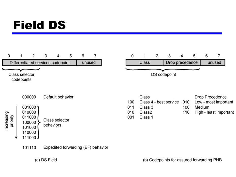 Field DS