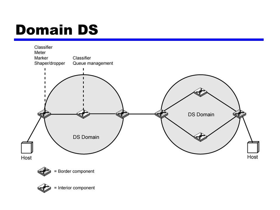 Domain DS