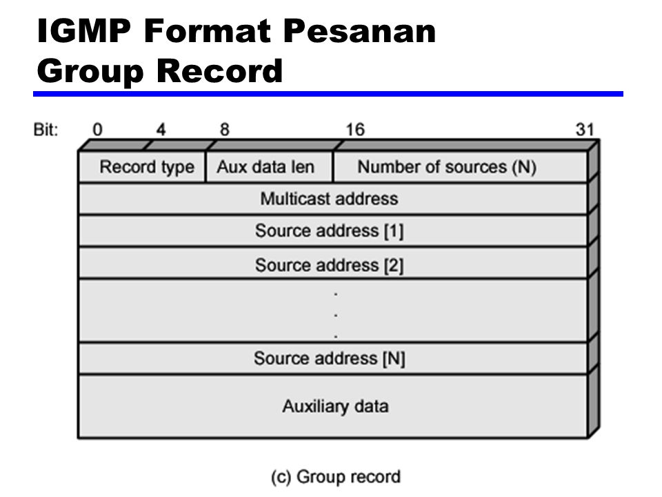 IGMP Format Pesanan Group Record