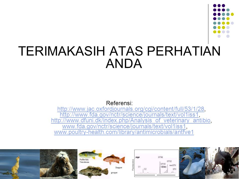 TERIMAKASIH ATAS PERHATIAN ANDA Referensi: http://www.jac.oxfordjournals.org/cgi/content/full/53/1/28, http://www.fda.gov/nctr/science/journals/text/vol1iss1, http://www.dfuni.dk/index.php/Analysis_of_veterinary_antibio, www.fda.gov/nctr/science/journals/text/vol1iss1, www.poultry-health.com/library/antimicrobials/antfve1 http://www.jac.oxfordjournals.org/cgi/content/full/53/1/28 http://www.fda.gov/nctr/science/journals/text/vol1iss1 http://www.dfuni.dk/index.php/Analysis_of_veterinary_antibiowww.fda.gov/nctr/science/journals/text/vol1iss1 www.poultry-health.com/library/antimicrobials/antfve1