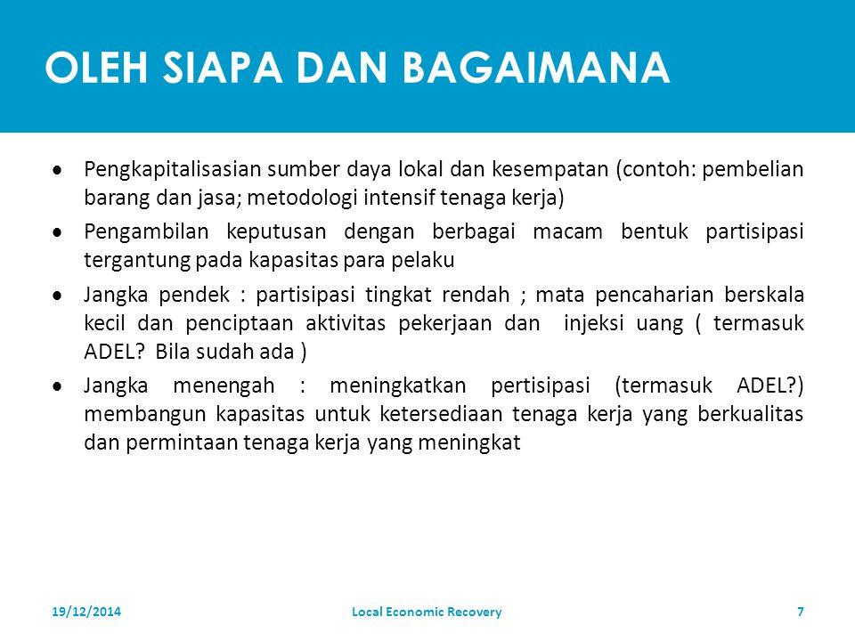 YANG DIBUTUHKAN  Modal teritorial, contoh : sumber daya lokal ( manusia, institusi, fisik, alam, finansial)  Investasi rekonstruksi dan bantuan ( pemerintah dan swasta ) 19/12/2014Local Economic Recovery8