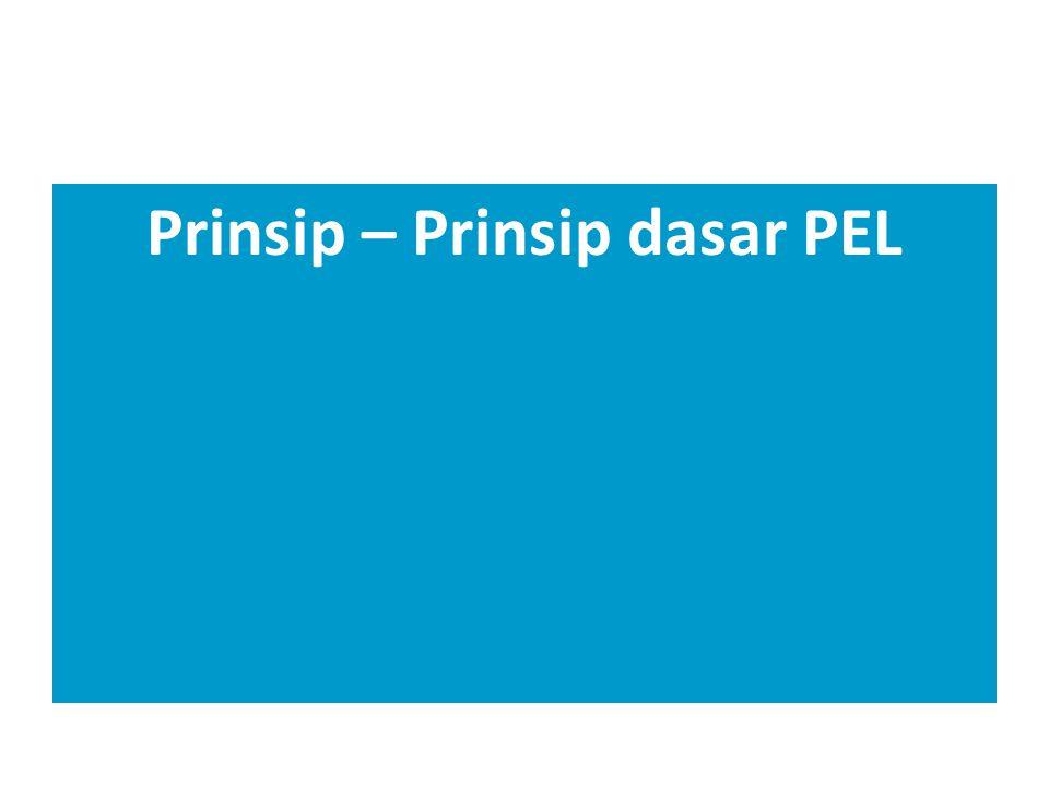 Prinsip – Prinsip dasar PEL