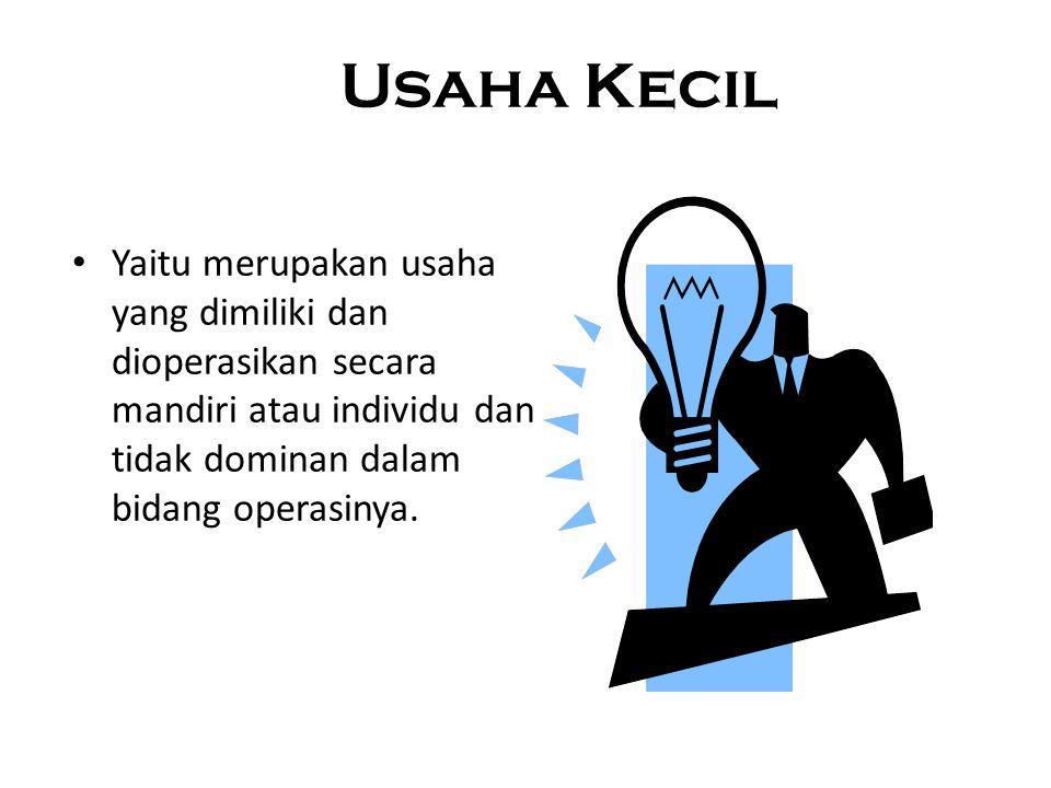 Usaha Kecil Yaitu merupakan usaha yang dimiliki dan dioperasikan secara mandiri atau individu dan tidak dominan dalam bidang operasinya.