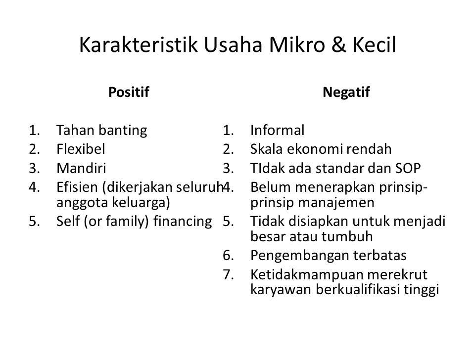 Karakteristik Usaha Mikro & Kecil Positif 1.Tahan banting 2.Flexibel 3.Mandiri 4.Efisien (dikerjakan seluruh anggota keluarga) 5.Self (or family) fina