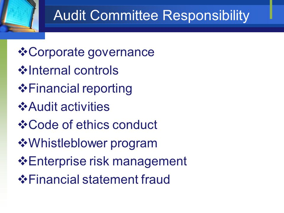 Audit Committee Responsibility  Corporate governance  Internal controls  Financial reporting  Audit activities  Code of ethics conduct  Whistleblower program  Enterprise risk management  Financial statement fraud