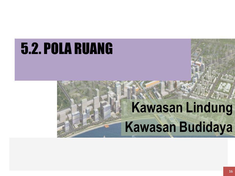 5.2. POLA RUANG Kawasan Lindung Kawasan Budidaya 16