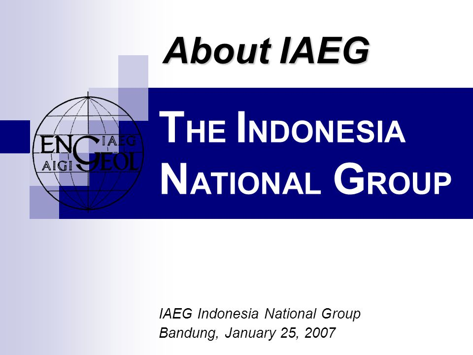 T HE I NDONESIA N ATIONAL G ROUP IAEG Indonesia National Group Bandung, January 25, 2007 About IAEG