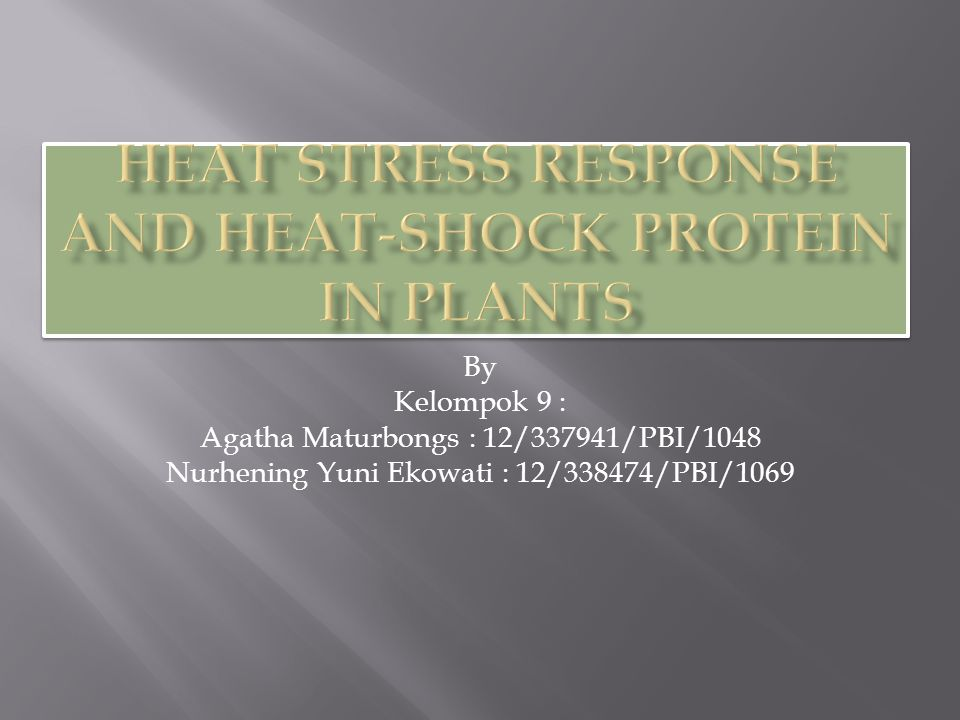  Plants and animals share similar mechanisms in the heat shock (HS) response, such as synthesis of the conserved HS proteins (Hsps).