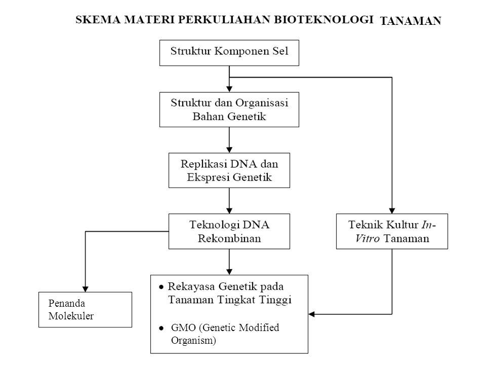 ** bio GMO (Genetic Modified Organism) Penanda Molekuler TANAMAN