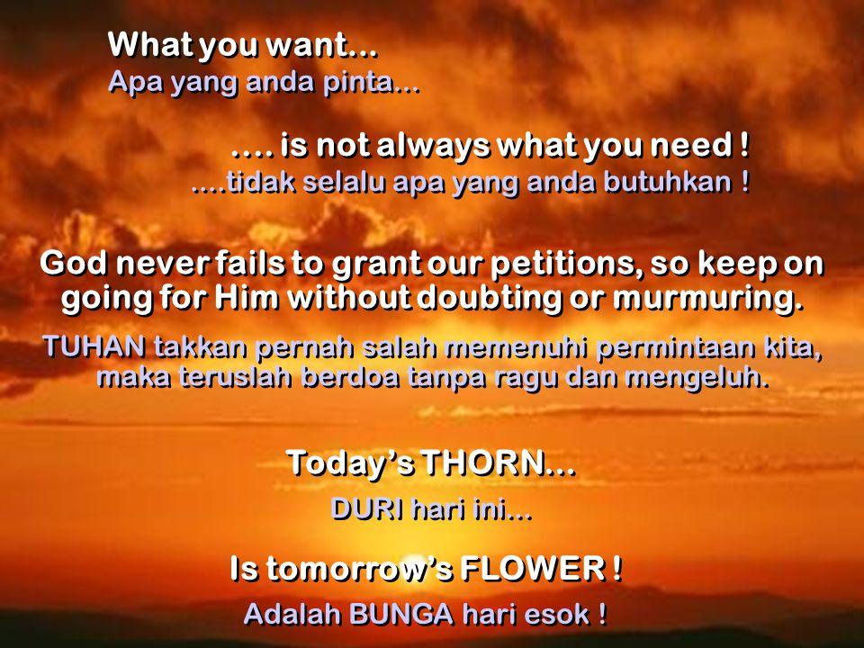 God always does things right . TUHAN senantiasa lakukan sesuatunya dengan benar .