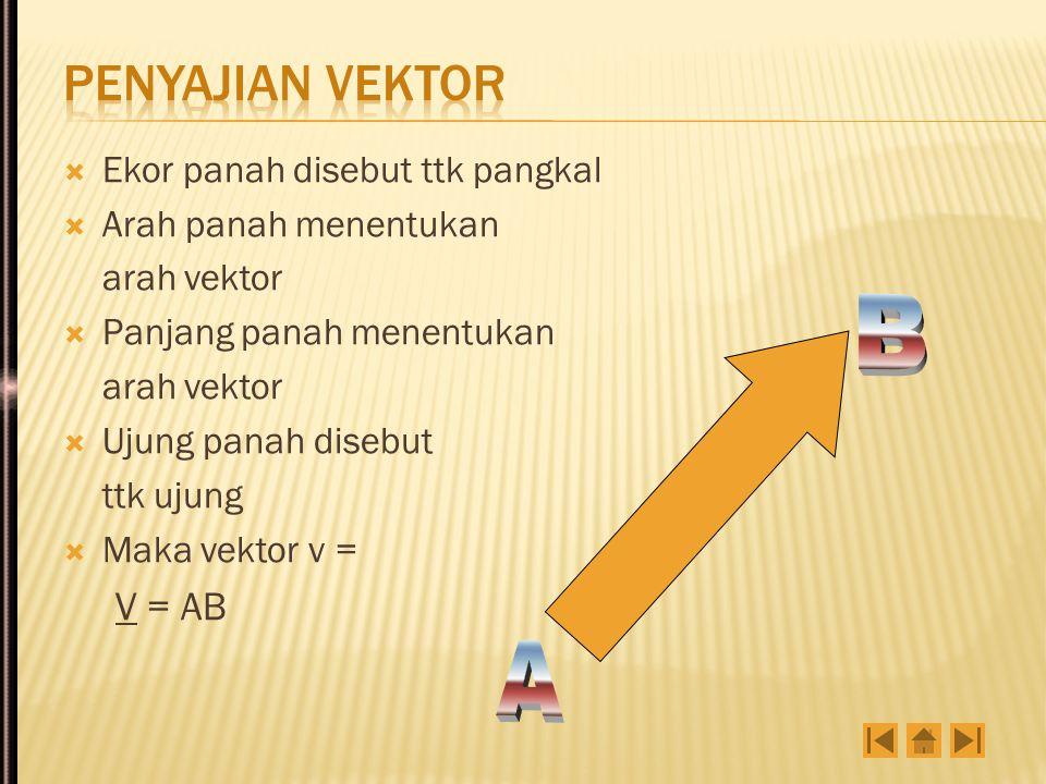  Ekor panah disebut ttk pangkal  Arah panah menentukan arah vektor  Panjang panah menentukan arah vektor  Ujung panah disebut ttk ujung  Maka vektor v = V = AB