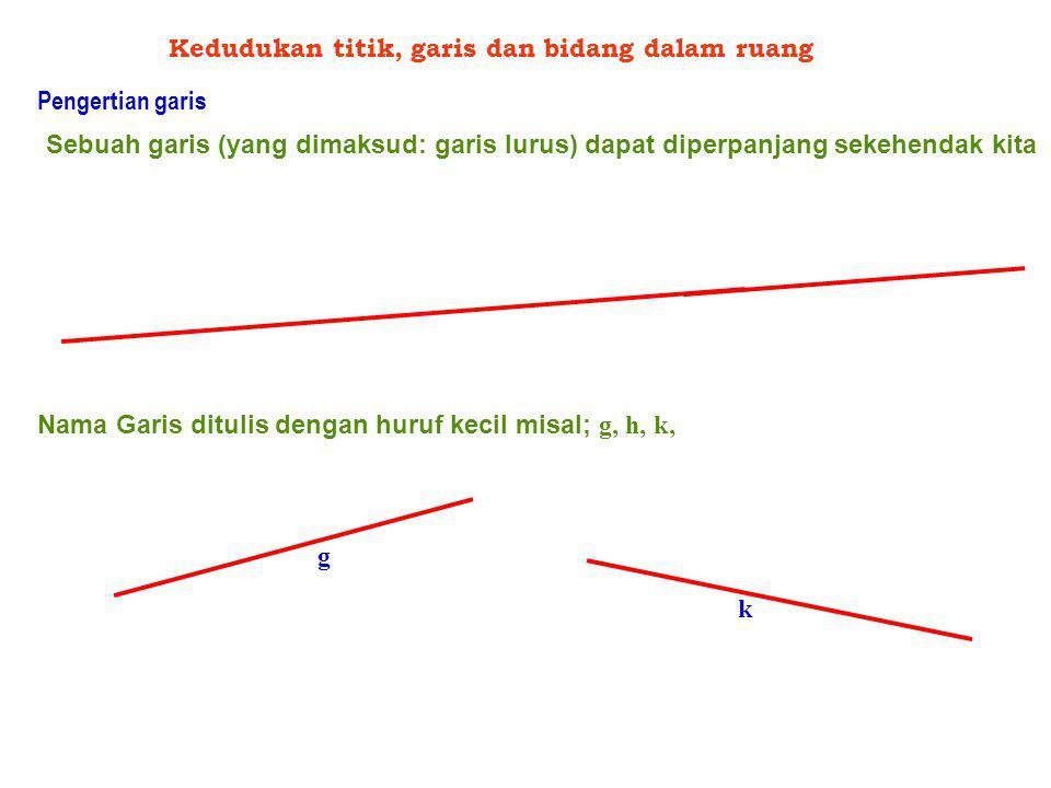 Kedudukan titik, garis dan bidang dalam ruang Pengertian garis Sebuah garis (yang dimaksud: garis lurus) dapat diperpanjang sekehendak kita Nama Garis ditulis dengan huruf kecil misal; g, h, k, g k
