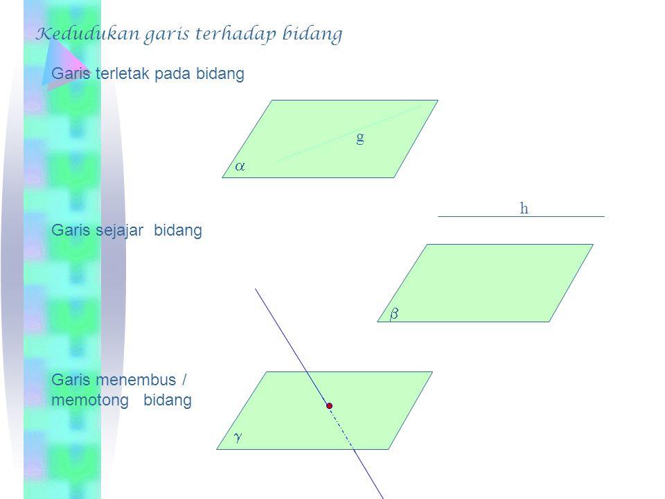 A B CD E F GH 4cm Diketahui kubus dengan panjang rusuk 4 cm Tentukan: Jarak AE ke CG =….