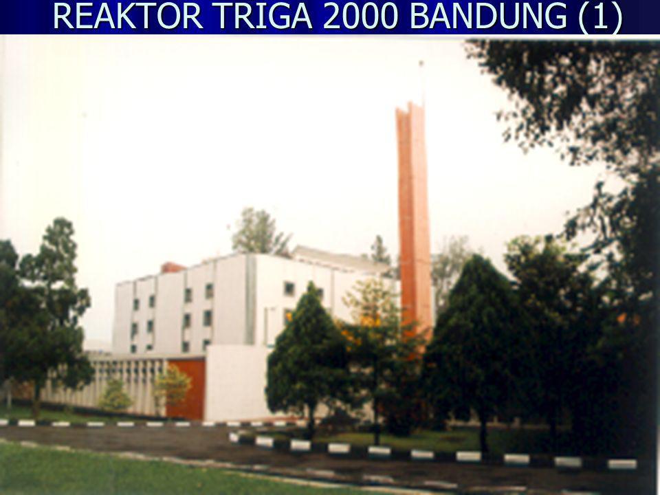 REAKTOR TRIGA 2000 BANDUNG (2) Reaktor TRIGA 2000 yang berada di Bandung adalah reaktor penelitian pertama yang dibangun di Indonesia.