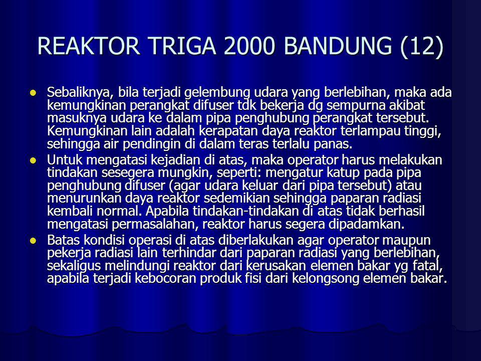 REAKTOR TRIGA 2000 BANDUNG (13) f.