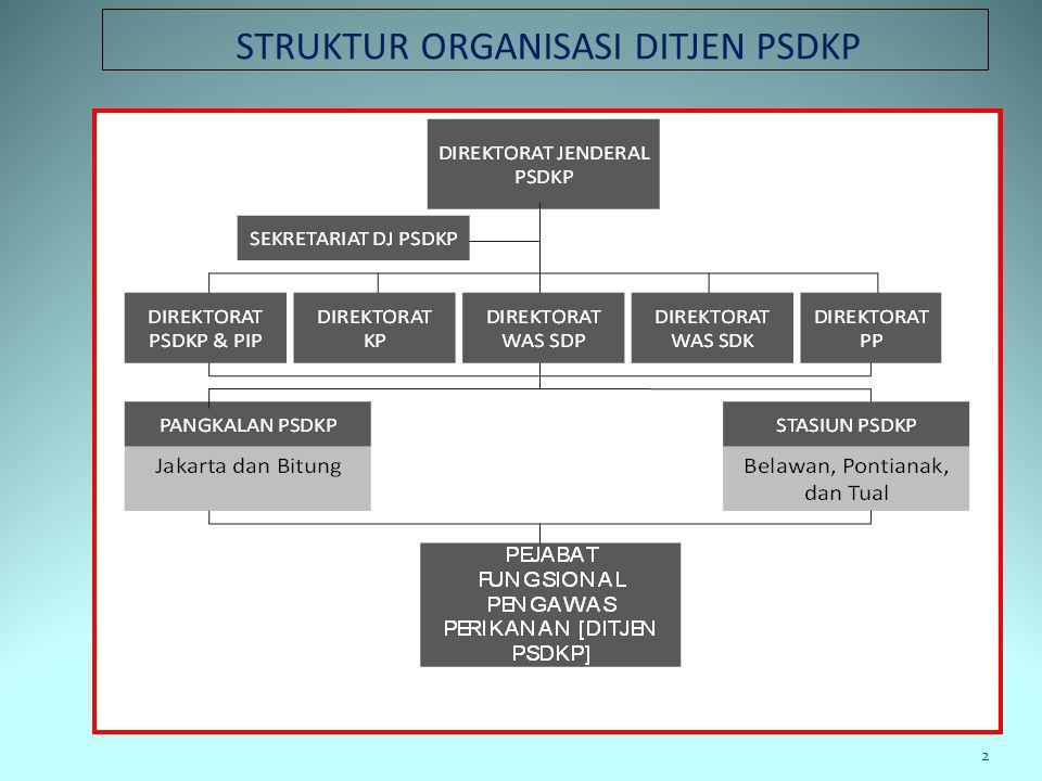 POKOK-POKOK PERSOALAN 1.Pembinaan teknis pengawasperikanan oleh DJ PSDKP 2.