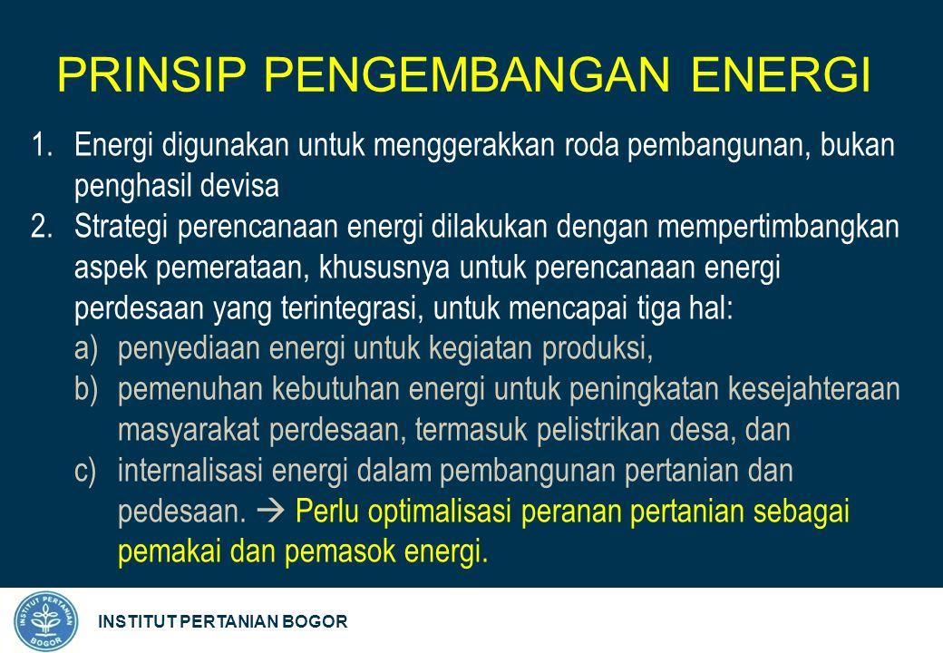 INSTITUT PERTANIAN BOGOR 1.Energi digunakan untuk menggerakkan roda pembangunan, bukan penghasil devisa 2.Strategi perencanaan energi dilakukan dengan mempertimbangkan aspek pemerataan, khususnya untuk perencanaan energi perdesaan yang terintegrasi, untuk mencapai tiga hal: a)penyediaan energi untuk kegiatan produksi, b)pemenuhan kebutuhan energi untuk peningkatan kesejahteraan masyarakat perdesaan, termasuk pelistrikan desa, dan c)internalisasi energi dalam pembangunan pertanian dan pedesaan.
