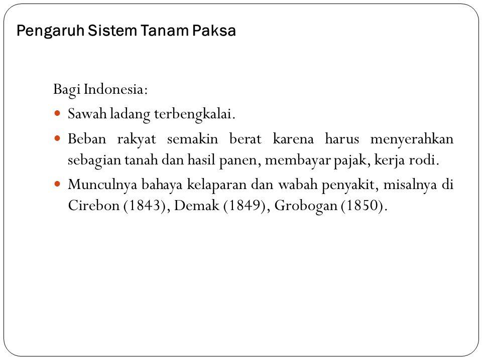 Pengaruh Sistem Tanam Paksa Bagi Indonesia: Sawah ladang terbengkalai. Beban rakyat semakin berat karena harus menyerahkan sebagian tanah dan hasil pa