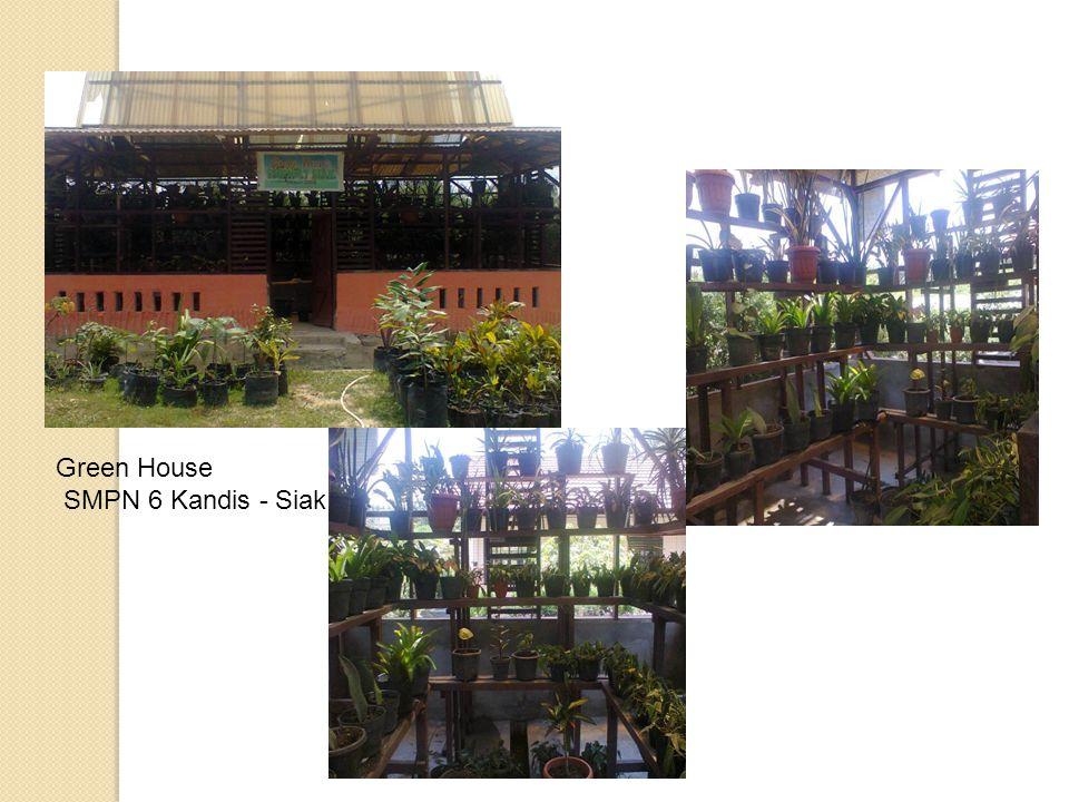 Green House SMPN 6 Kandis - Siak