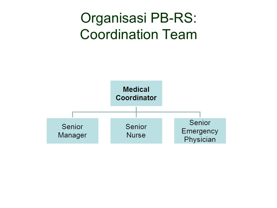 Organisasi PB-RS: Coordination Team Medical Coordinator Senior Manager Senior Nurse Senior Emergency Physician