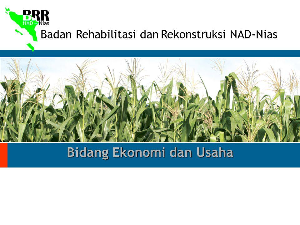 Badan Rehabilitasi dan Rekonstruksi NAD-Nias Bidang Ekonomi dan Usaha