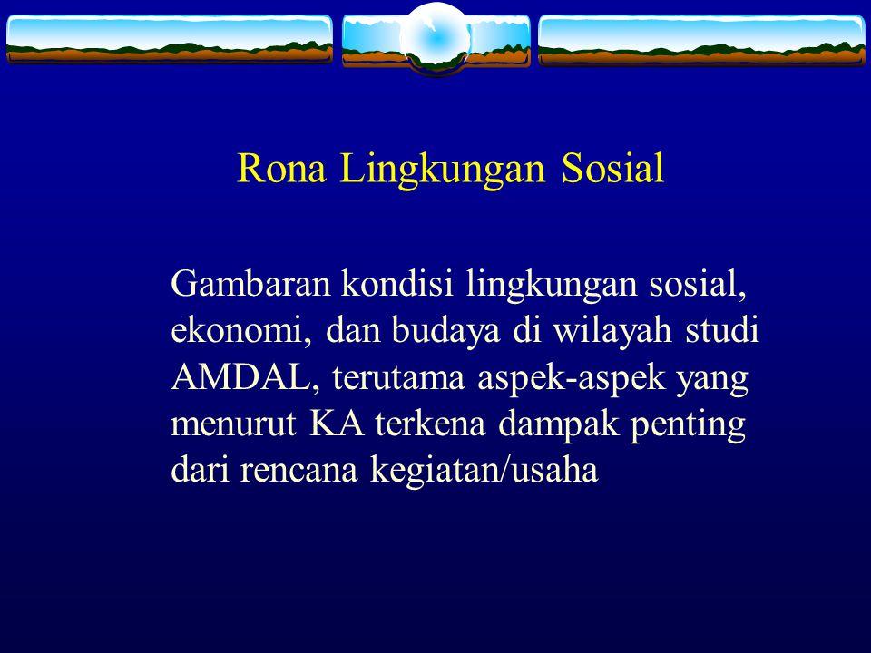 Rona Lingkungan Sosial Gambaran kondisi lingkungan sosial, ekonomi, dan budaya di wilayah studi AMDAL, terutama aspek-aspek yang menurut KA terkena da