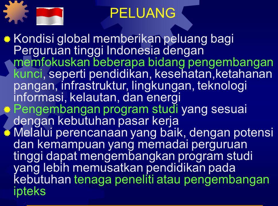 PELUANG  Kondisi global memberikan peluang bagi Perguruan tinggi Indonesia dengan memfokuskan beberapa bidang pengembangan kunci, seperti pendidikan, kesehatan,ketahanan pangan, infrastruktur, lingkungan, teknologi informasi, kelautan, dan energi  Pengembangan program studi yang sesuai dengan kebutuhan pasar kerja  Melalui perencanaan yang baik, dengan potensi dan kemampuan yang memadai perguruan tinggi dapat mengembangkan program studi yang lebih memusatkan pendidikan pada kebutuhan tenaga peneliti atau pengembangan ipteks