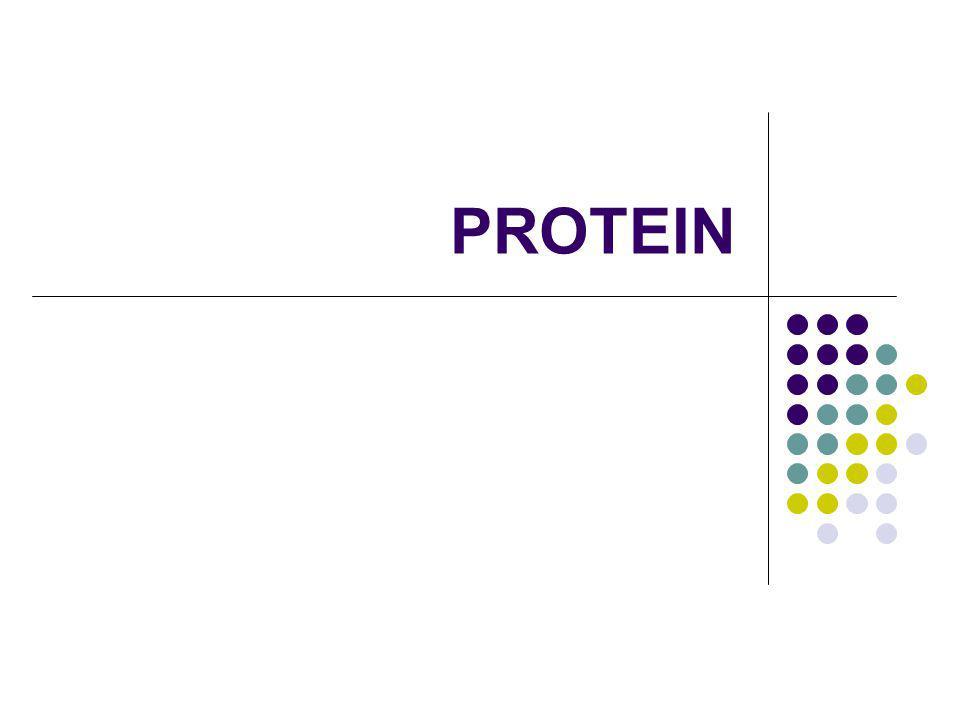 Biopolimer Polisakarida: energy storage Asam-asam nukleat: data storage dan transmission of information Protein (poliamida): very diversed functions (sebagai enzim, sebagai outer cover, sebagai antibodi, dll.)