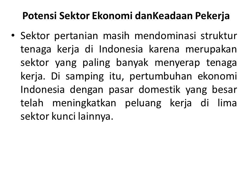 Potensi Sektor Ekonomi danKeadaan Pekerja Sektor pertanian masih mendominasi struktur tenaga kerja di Indonesia karena merupakan sektor yang paling ba
