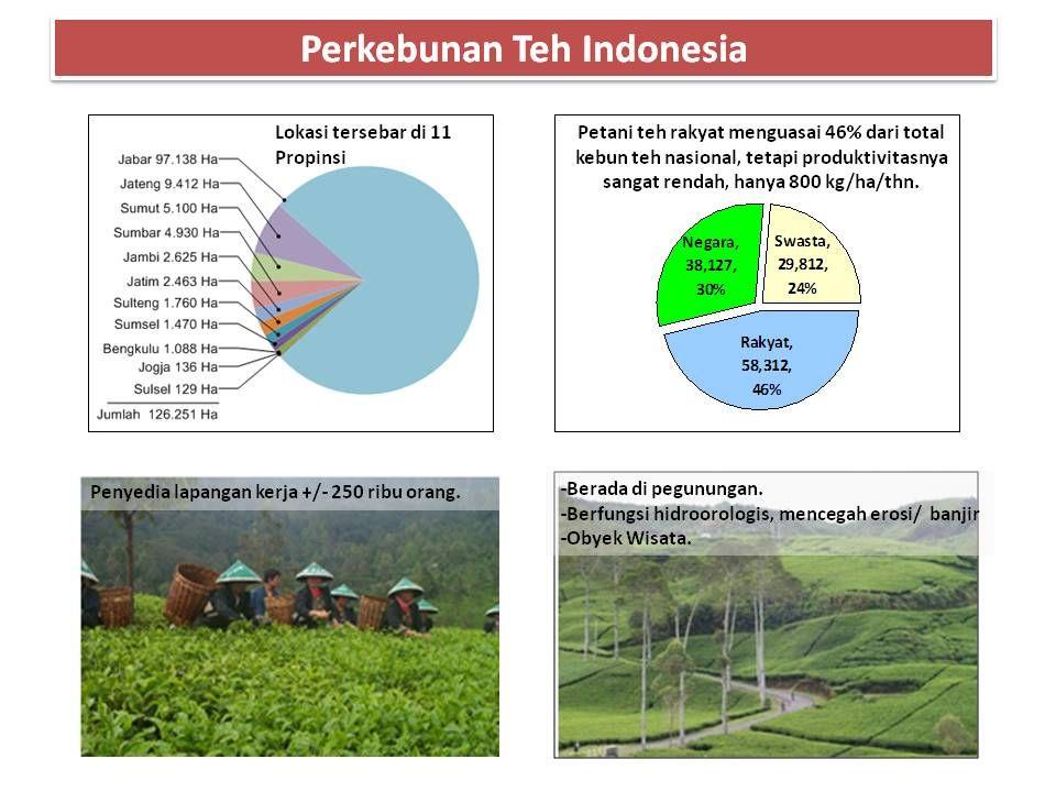Proposal Rincian Anggaran Rp.