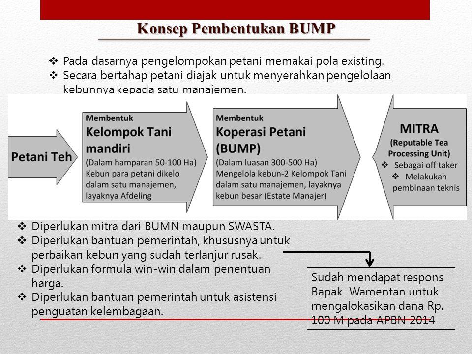 PT Indonesian Tea Incorporated  Petani sebagai pemegang saham sekaligus sebagai tenaga kerja pada korporasi yang dibentuk, di mana lahan petani digunakan sebagai basis kontribusi sahamnya.
