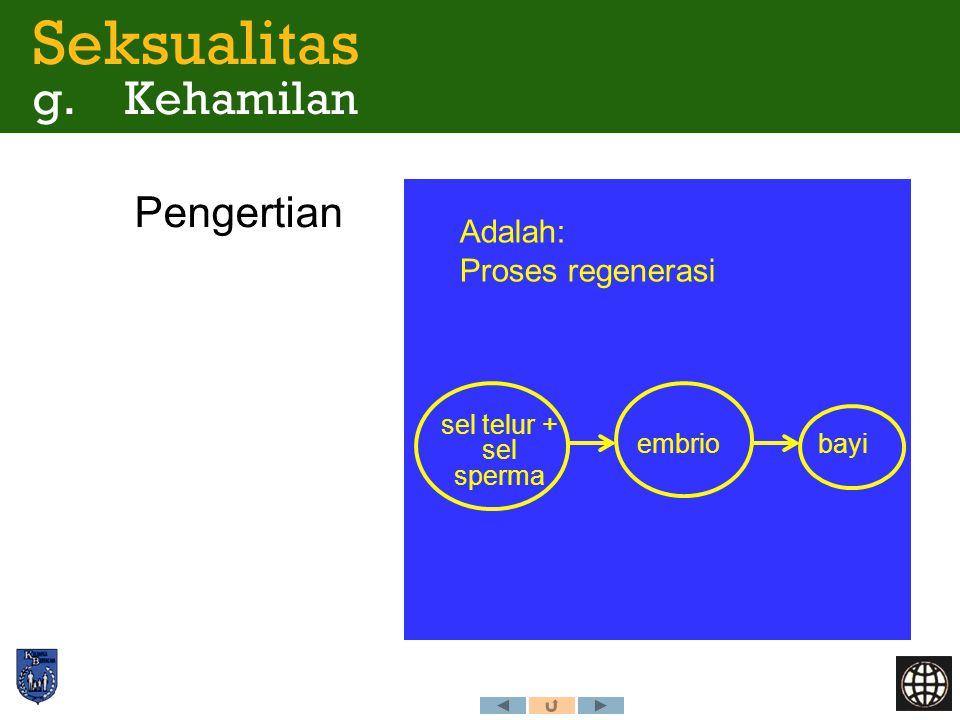 Pengertian Seksualitas g. Kehamilan sel telur + sel sperma embriobayi Adalah: Proses regenerasi