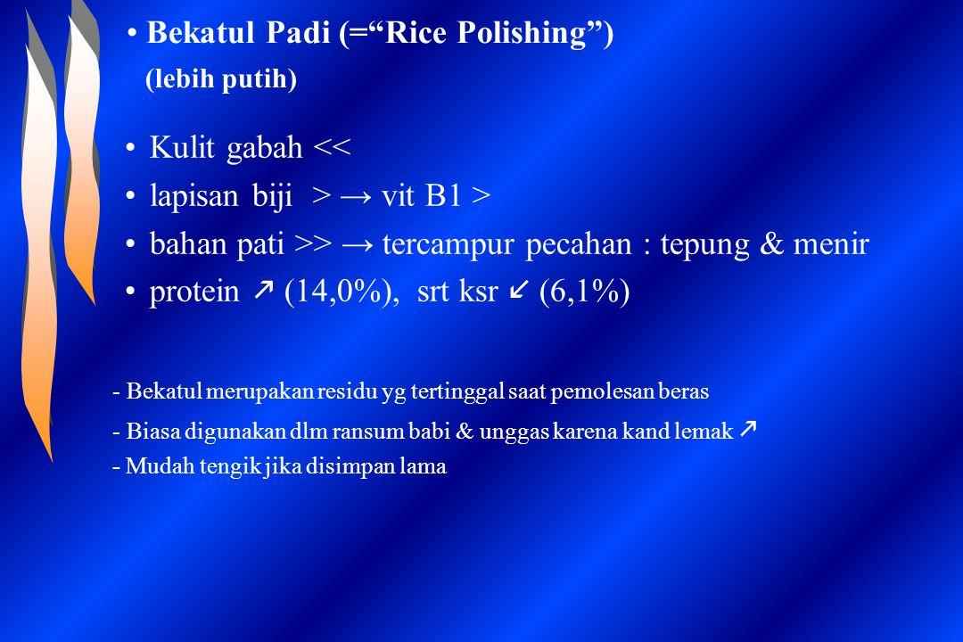 "Bekatul Padi (=""Rice Polishing"") (lebih putih) Kulit gabah << lapisan biji > → vit B1 > bahan pati >> → tercampur pecahan : tepung & menir protein  ("