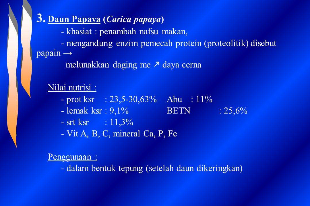 3. Daun Papaya (Carica papaya) - khasiat : penambah nafsu makan, - mengandung enzim pemecah protein (proteolitik) disebut papain → melunakkan daging m