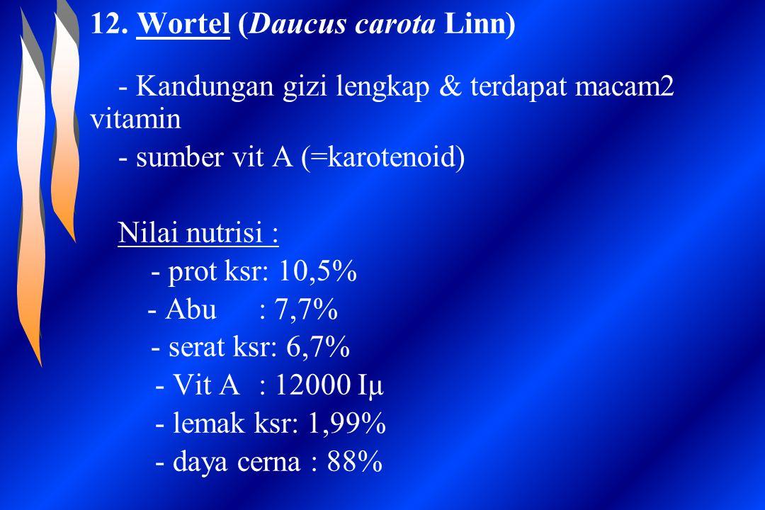 12. Wortel (Daucus carota Linn) - Kandungan gizi lengkap & terdapat macam2 vitamin - sumber vit A (=karotenoid) Nilai nutrisi : - prot ksr: 10,5% - Ab