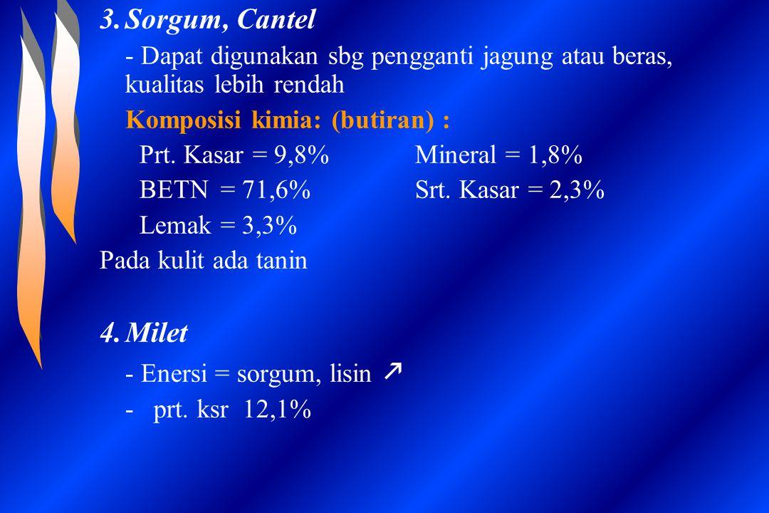 3.Sorgum, Cantel - Dapat digunakan sbg pengganti jagung atau beras, kualitas lebih rendah Komposisi kimia: (butiran) : Prt. Kasar = 9,8% Mineral = 1,8