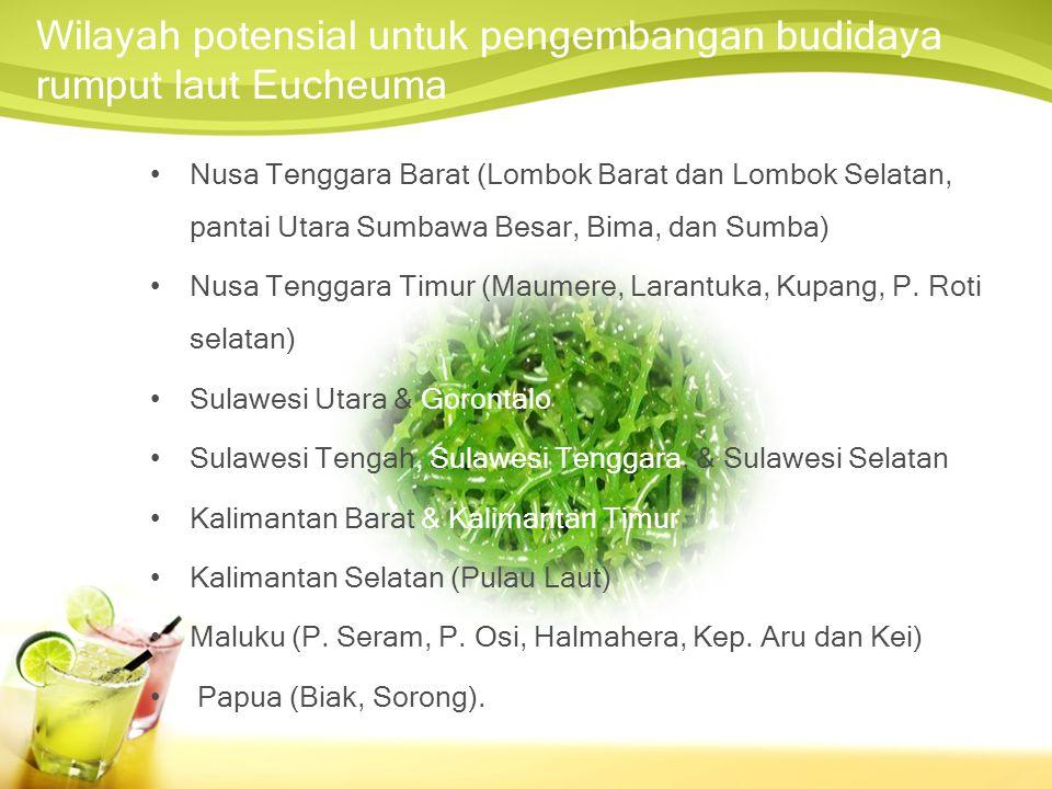 Wilayah potensial untuk pengembangan budidaya rumput laut Eucheuma Nusa Tenggara Barat (Lombok Barat dan Lombok Selatan, pantai Utara Sumbawa Besar, Bima, dan Sumba) Nusa Tenggara Timur (Maumere, Larantuka, Kupang, P.