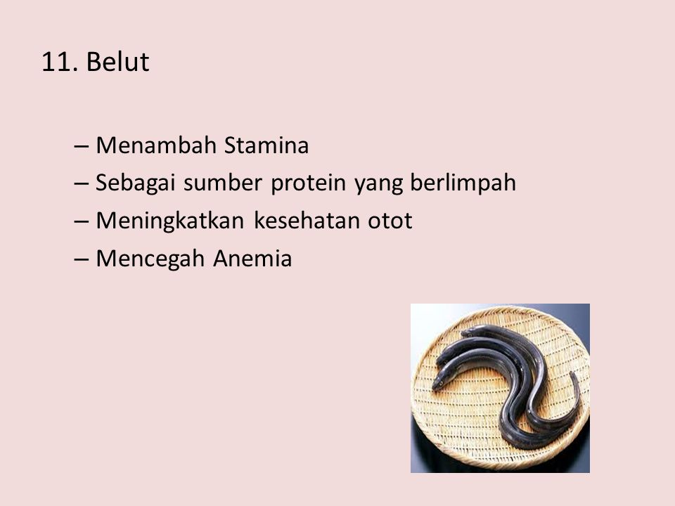 11. Belut – Menambah Stamina – Sebagai sumber protein yang berlimpah – Meningkatkan kesehatan otot – Mencegah Anemia