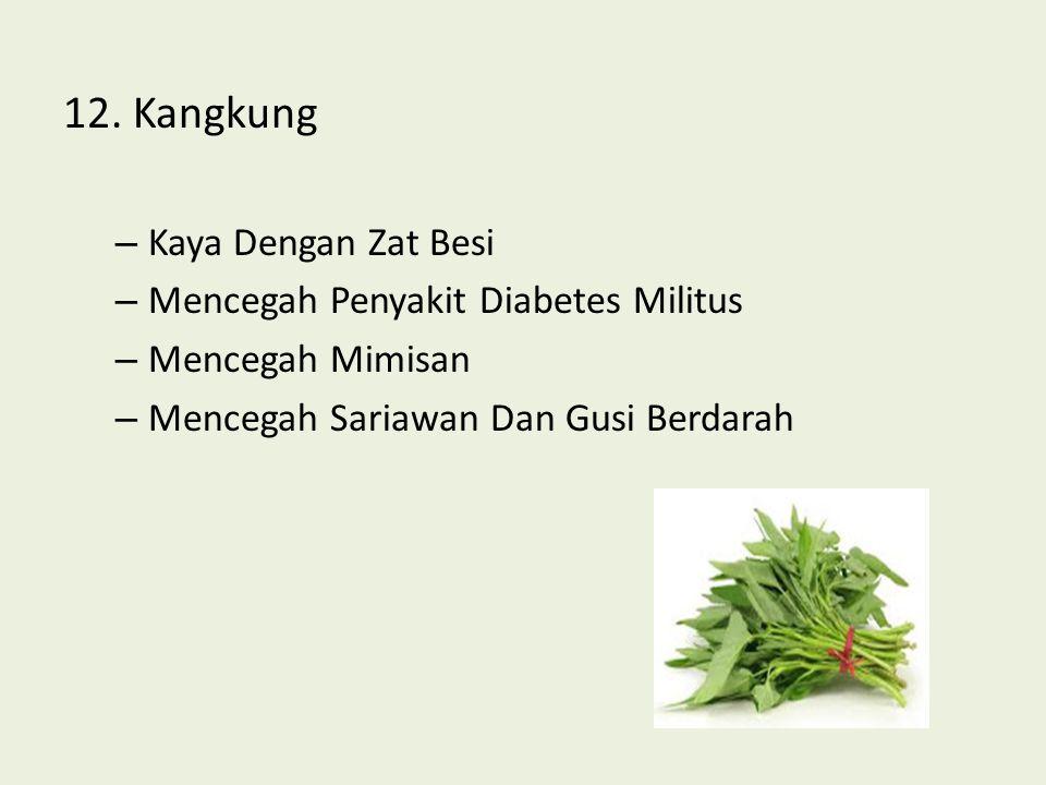 12. Kangkung – Kaya Dengan Zat Besi – Mencegah Penyakit Diabetes Militus – Mencegah Mimisan – Mencegah Sariawan Dan Gusi Berdarah
