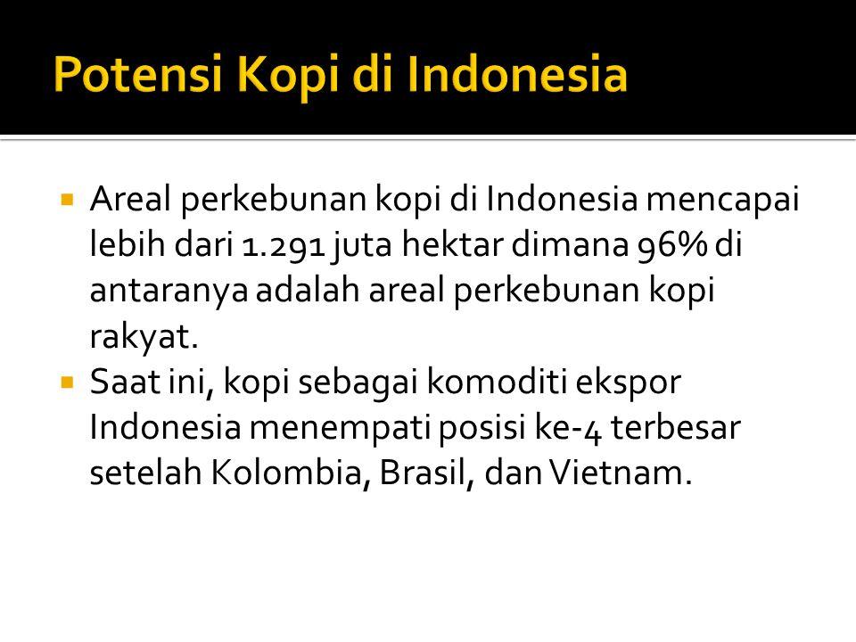  Areal perkebunan kopi di Indonesia mencapai lebih dari 1.291 juta hektar dimana 96% di antaranya adalah areal perkebunan kopi rakyat.  Saat ini, ko